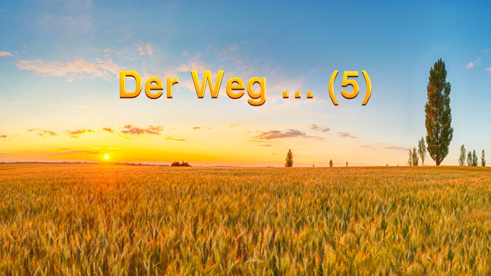 Der Weg … (5)