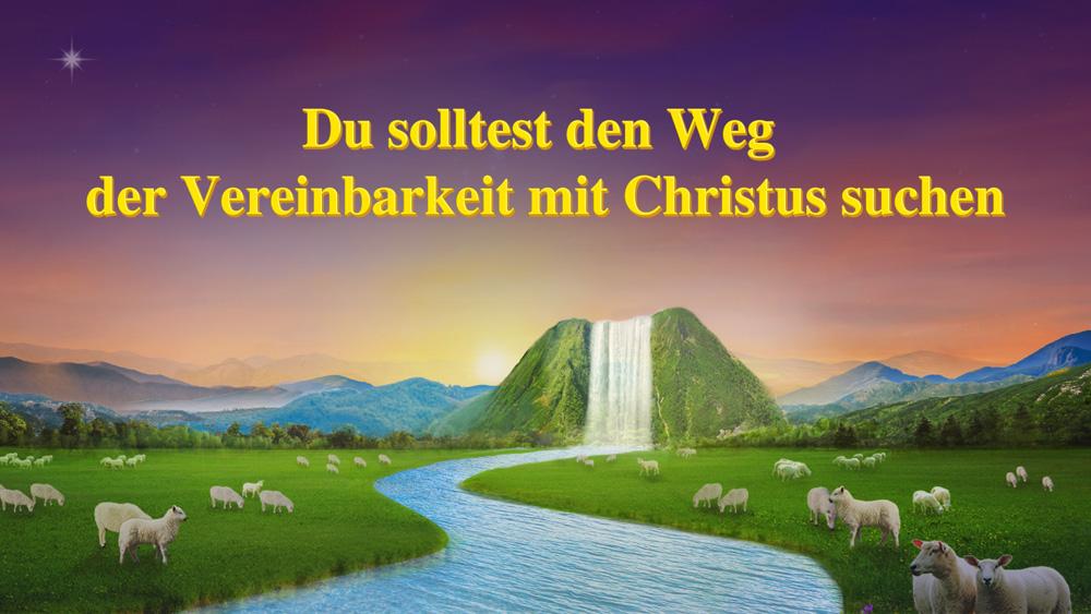 Du solltest den Weg der Vereinbarkeit mit Christus suchen